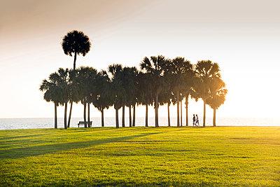 Florida, Saint Petersburg, Pinellas County, Sunrise, Vinoy Park, Waterfront, Tampa Bay - p651m2032675 by John Coletti photography