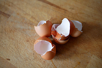 Egg shells - p5864275 by Kniel Synnatzschke