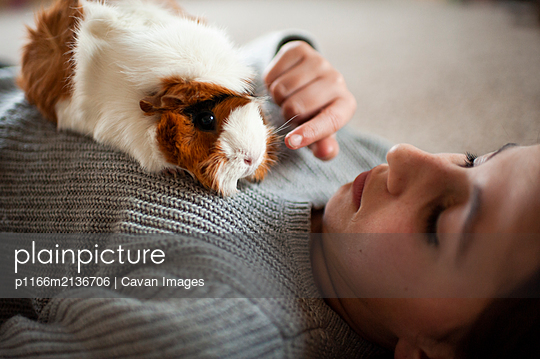Young girl  laying on the floor petting her guinea pig at home - p1166m2136706 by Cavan Images
