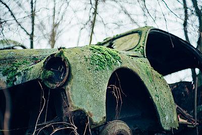 Autowrack im Wald - p1463m2227432 von Wolfgang Simlinger