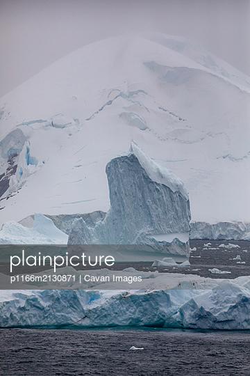 Icebergs, Antarctica - p1166m2130871 by Cavan Images