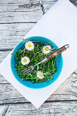 Bowl of garden cress salad and daisies (Bellis perennis) on napkin and grey wooden table - p300m926527f by Larissa Veronesi