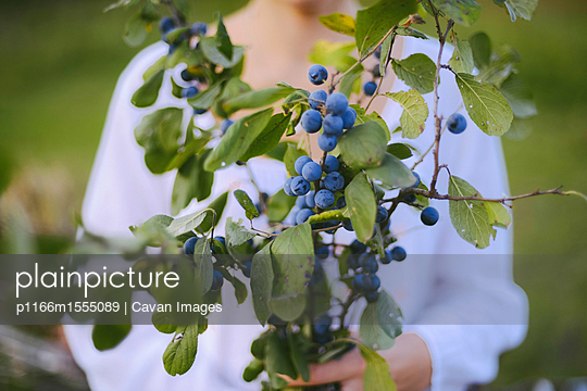 p1166m1555089 von Cavan Images