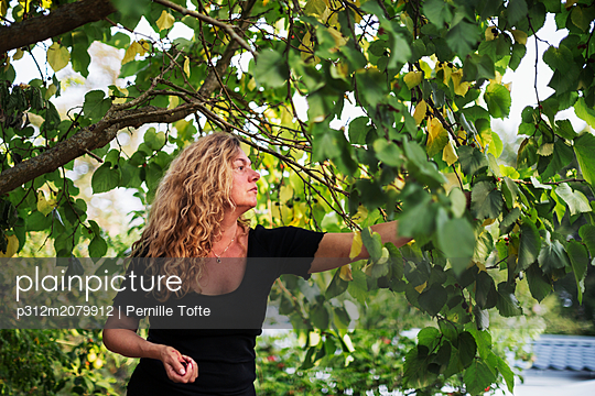 Woman picking berrys - p312m2079912 by Pernille Tofte