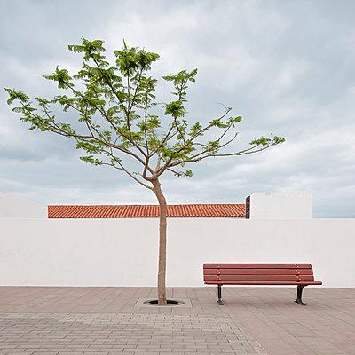 Fuerteventura - p1162m949113 by Ralf Wilken