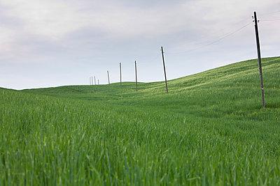 Hügeliges Land - p7980136 von Florian Loebermann