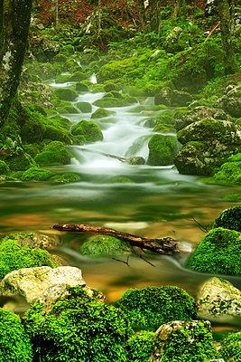 Fluss - p179m932394 von Roland Schneider