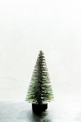 Kleiner Tannenbaum  - p451m1214872 von Anja Weber-Decker