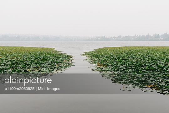 p1100m2060925 von Mint Images