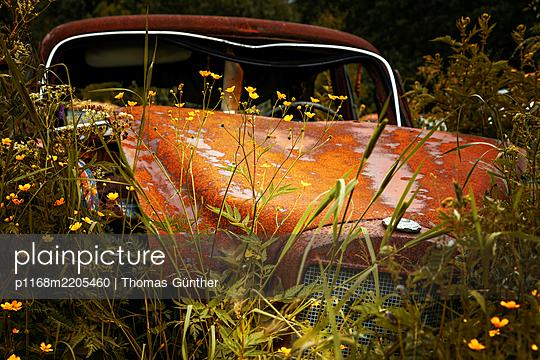 Autowrack in der Natur, Schweden - p1168m2205460 von Thomas Günther