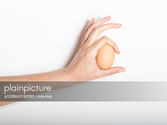 Hand holding egg - p1229m2192393 by noa-mar