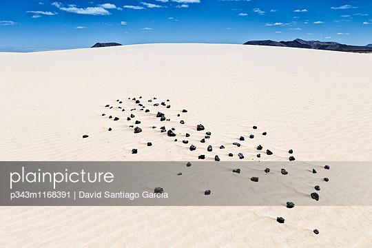 p343m1168391 von David Santiago Garcia