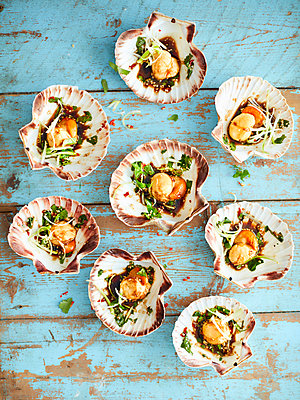 Scallops with shells starter - p429m1407978 by Debby Lewis-Harrison