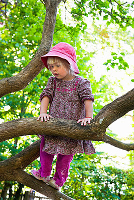 Girl climbing tree in forest - p42916677f by Henglein and Steets