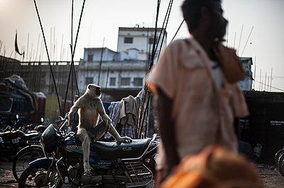 Varanasi - p1007m1060010 by Tilby Vattard