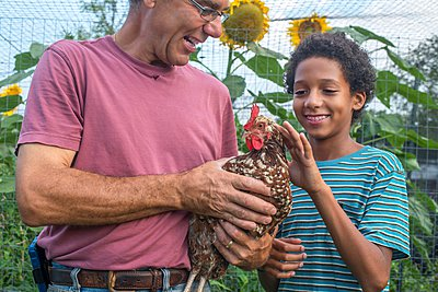 Mature farmer and boy petting hen on farm - p924m1081816f by Sue Barr