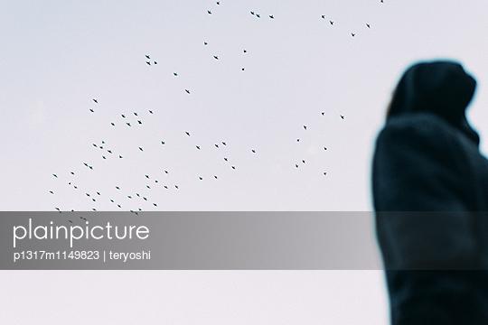 Zugvögel - p1317m1149823 von teryoshi