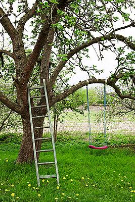Gartenidylle - p4320422 von mia takahara