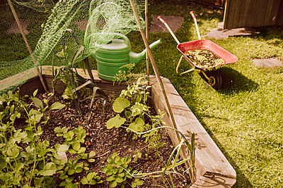 Private vegetable garden - p300m1053114f by Mareen Fischinger