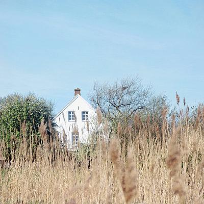 Haus am Meer - p989m902488 von Gine Seitz