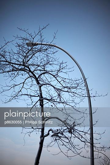 Ungleiche Liebe - p8630055 von Philipp Schmitz