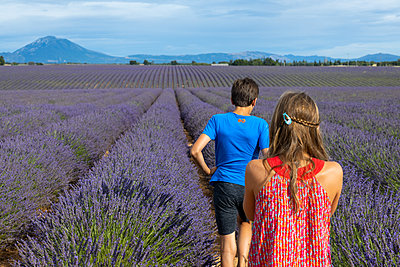France, Two children in the lavender field - p076m2222360 by Tim Hoppe