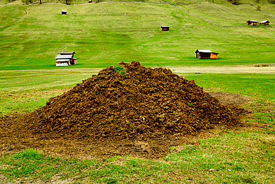 Dung pile - p248m669091 by BY