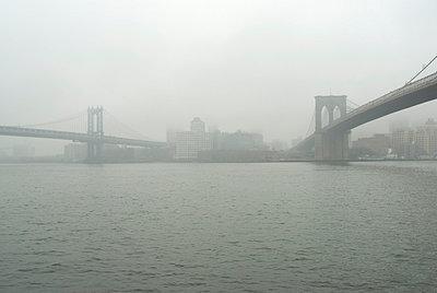 Zwischen Brooklyn und Manhattan Bridge - p5690051 von Jeff Spielman