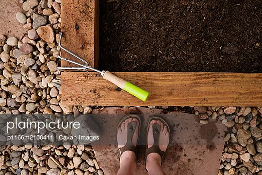 Planter Box - p1166m2130411 by Cavan Images