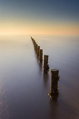 Groynes, Brean Beach, Somerset, England, United Kingdom - p871m2113626 by Bill Ward
