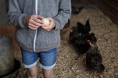 Midsection of girl holding egg in poultry farm - p1166m1485317 by Cavan Images