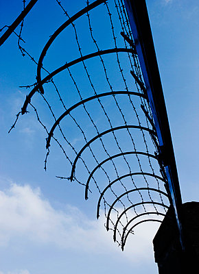 A fence with barbed wire - p312m672775 by Bruno Ehrs