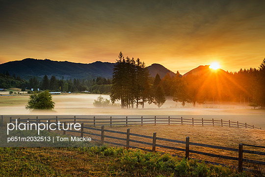 p651m2032513 von Tom Mackie