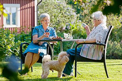 Senior women drinking in garden - p312m1551886 by Johner Images