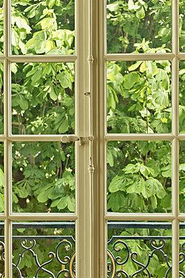 Window in Paris - p445m1128626 by Marie Docher