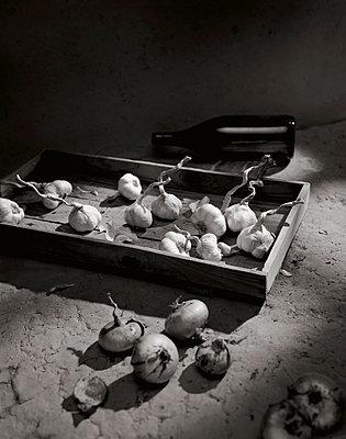 Knoblauch und Zwiebeln, Essen, Lebensmittel - p1316m1161136 von Robert Striegl