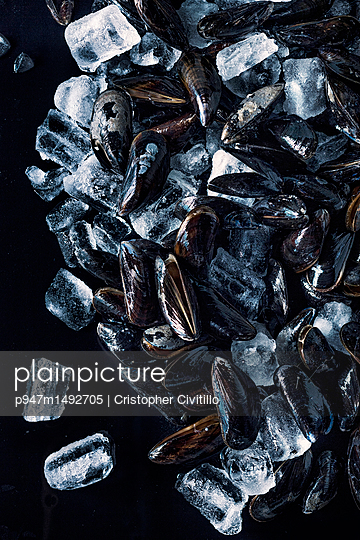 Cooled mussels - p947m1492705 by Cristopher Civitillo