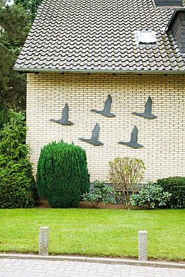 Front garden - p2380068 by Anja Bäcker