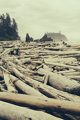 View of coastline from Ruby Beach, piles of driftwood in the foreground. Olympic National park.  - p1100m1158493 by Mint Images