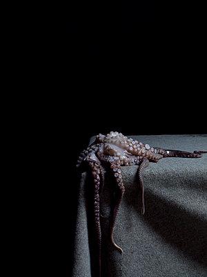 Calamari - p444m898509 by Müggenburg