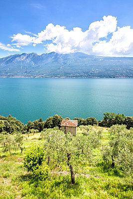 Landschaft - p1205m2072878 von Toni Anzenberger