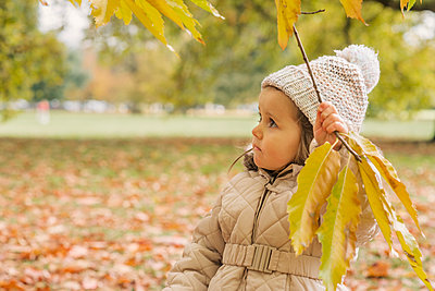 A day in a park, Autumn, London - p1323m1190265 by Sarah Toure