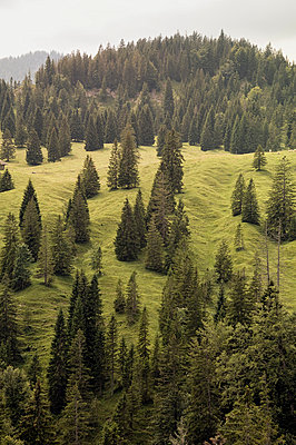 The Alps - p715m755898 by Marina Biederbick