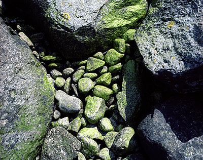 Steine - p945m1502132 von aurelia frey