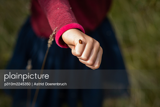 Ladybird on her hand - p310m2245350 by Astrid Doerenbruch