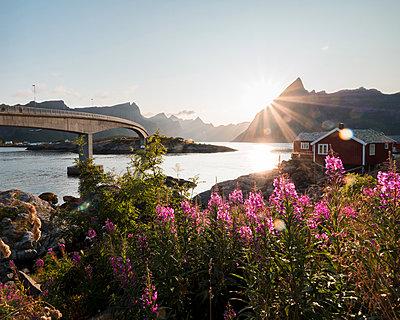 Norwegen, Das Fischerdorf Hamnoy - p1549m2158062 von Sam Green