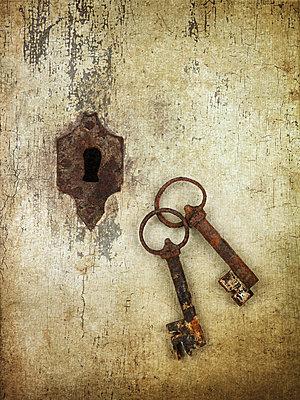 Door lock - p1052m1124529 by Wolfgang Ludwig