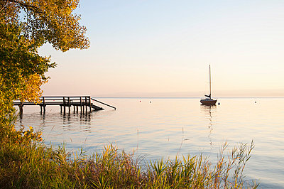 Germany, Bavaria, Sailing boat on Lake Ammersee, reed in foreground - p300m768723f by Ulrich Hagemann