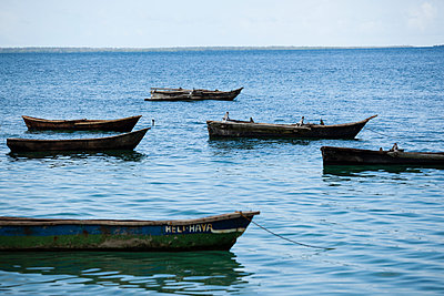 Fishing boats - p842m939614 by Renée Del Missier