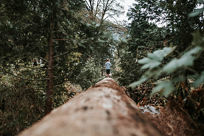 Mid distance view of boy walking on log in forest at Yosemite National Park - p1166m1526862 by Cavan Images